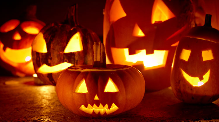 Volunteer Opportunities:  Trick or Treat Spooky Bash
