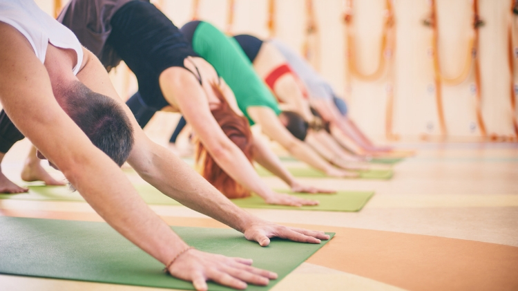 Vinyasa Yoga Flow in the 3 Star