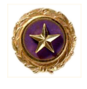goldstar-pin.png